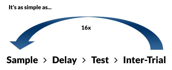 Repeat Sample > Transit > Test > Inter-Trial